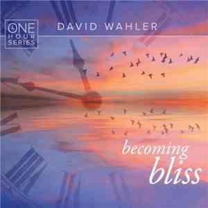David Wahler - Becoming Bliss One Hour Series (2016)
